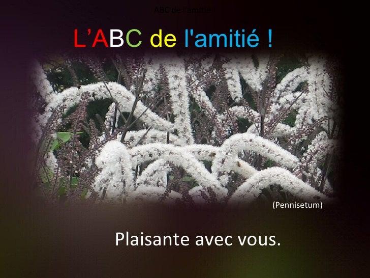 (Pennisetum) Plaisante avec vous. ABC de l'amitié ! L'A B C   de   l'amitié !