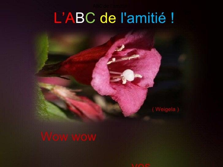 L'A B C   de   l'amitié ! Wow wow  vos accomplissements. ( Weigela ) ABC de l'amitié !