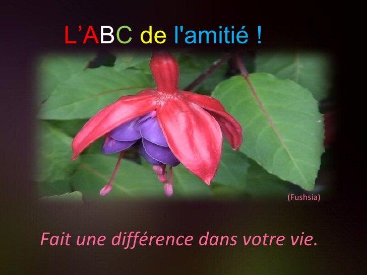 (Fushsia) Fait une différence dans votre vie. L'A B C   de   l'amitié !