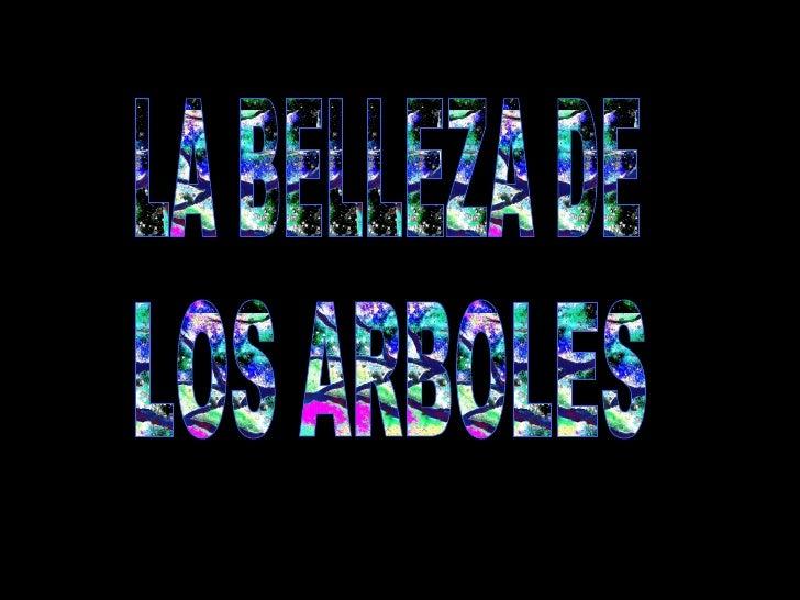 LA BELLEZA DE LOS ARBOLES