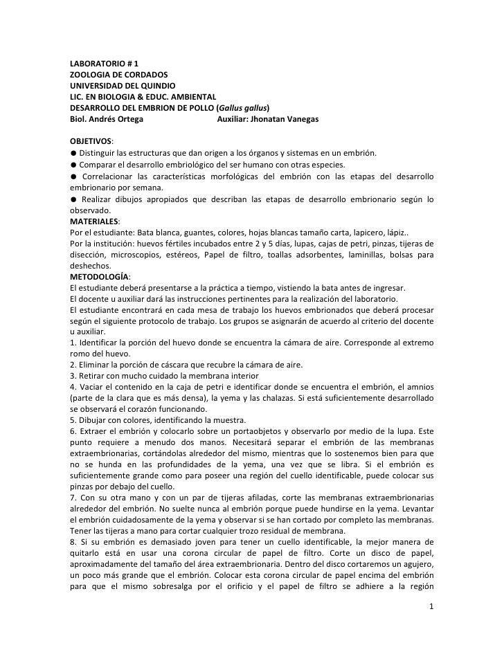 LABORATORIO # 1ZOOLOGIA DE CORDADOSUNIVERSIDAD DEL QUINDIOLIC. EN BIOLOGIA & EDUC. AMBIENTALDESARROLLO DEL EMBRION DE POLL...