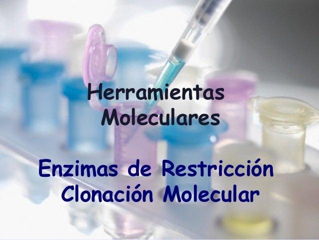 Herramientas Moleculares Enzimas de Restricción Clonación Molecular