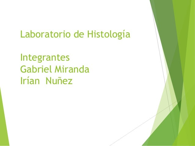 Laboratorio de Histología Integrantes Gabriel Miranda Irían Nuñez