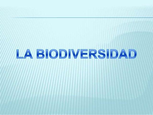 La biodiversidad o diversidad biológica es la variedad de la vida. Este reciente concepto incluye varios niveles de la org...