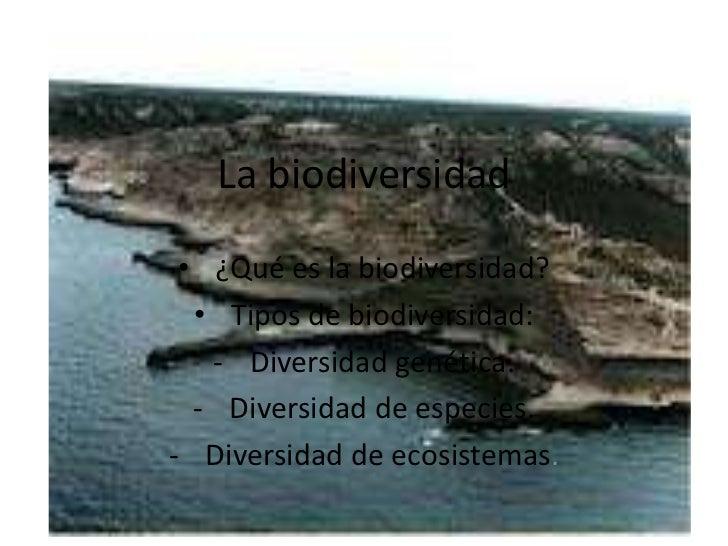 La biodiversidad • ¿Qué es la biodiversidad?  • Tipos de biodiversidad:   - Diversidad genética.  - Diversidad de especies...