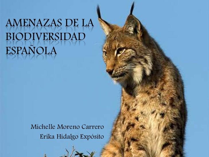 AMENAZAS DE LABIODIVERSIDADESPAÑOLA   Michelle Moreno Carrero     Erika Hidalgo Expósito