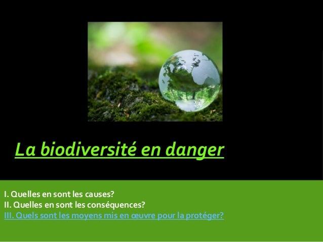 La biodiversité en danger I. Quelles en sont les causes? II. Quelles en sont les conséquences? III. Quels sont les moyens ...