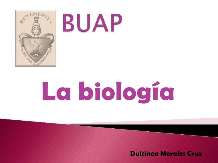 BUAP<br />La biología<br />Dulcinea Morales Cruz<br />
