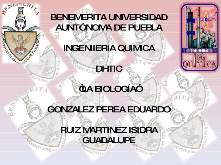 """BENEMERITA UNIVERSIDAD AUNTÓNOMA DE PUEBLA INGENIIERIA QUIMICA DHTIC """" LA BIOLOGÍA"""" GONZALEZ PEREA EDUARDO RUIZ MARTINEZ I..."""