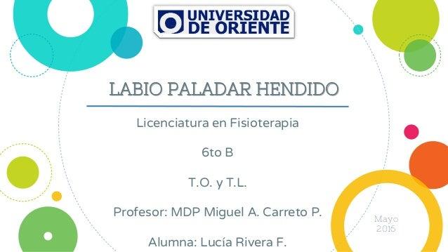 LABIO PALADAR HENDIDO Licenciatura en Fisioterapia 6to B T.O. y T.L. Profesor: MDP Miguel A. Carreto P. Alumna: Lucía Rive...