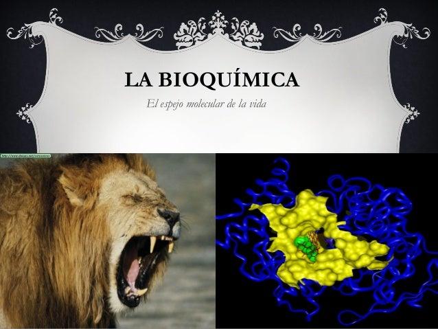 LA BIOQUÍMICA El espejo molecular de la vida