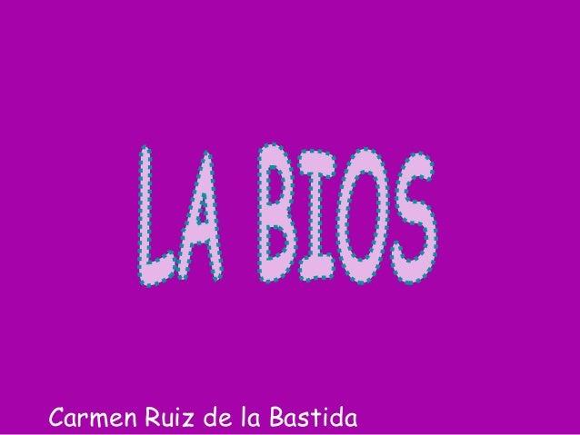 Carmen Ruiz de la Bastida