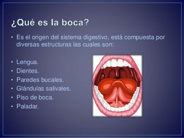 La boca \