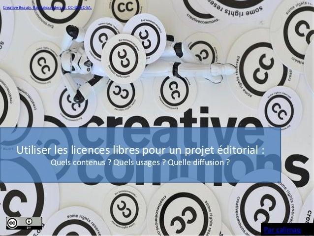 Creative Beauty. Par Kalexanderson. CC-BY-NC-SA.  Utiliser les licences libres pour un projet éditorial : Quels contenus ?...