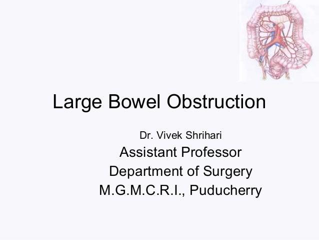 Large Bowel Obstruction Dr. Vivek Shrihari Assistant Professor Department of Surgery M.G.M.C.R.I., Puducherry
