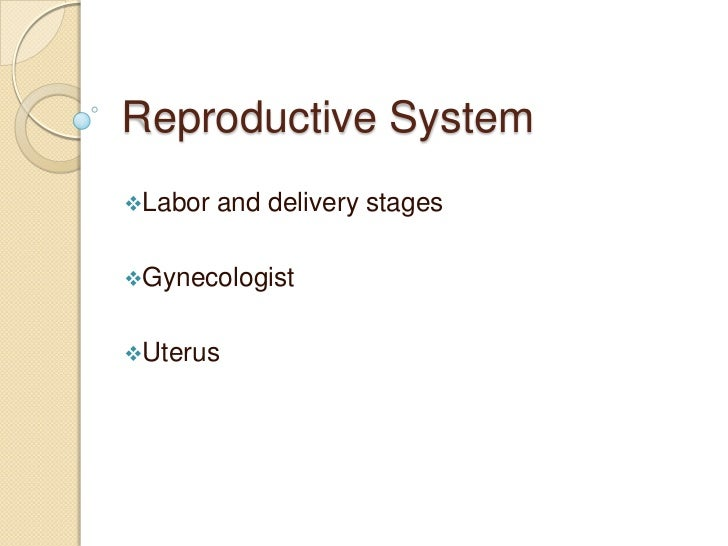 Reproductive System<br /><ul><li>Labor and delivery stages