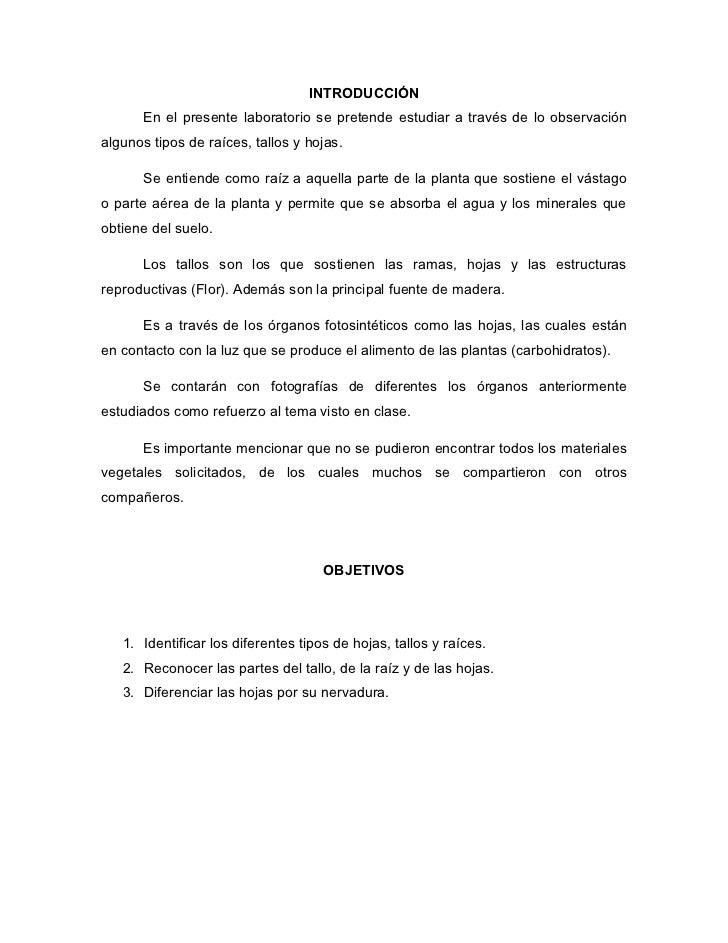 Laboratoratorio de botanica tallos y raices for Botanica general pdf