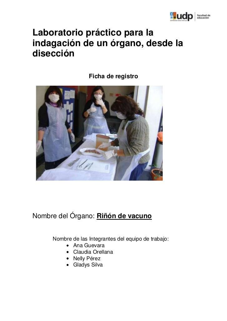 Laboratorio práctico para laindagación de un órgano, desde ladisección                   Ficha de registroNombre del Órgan...