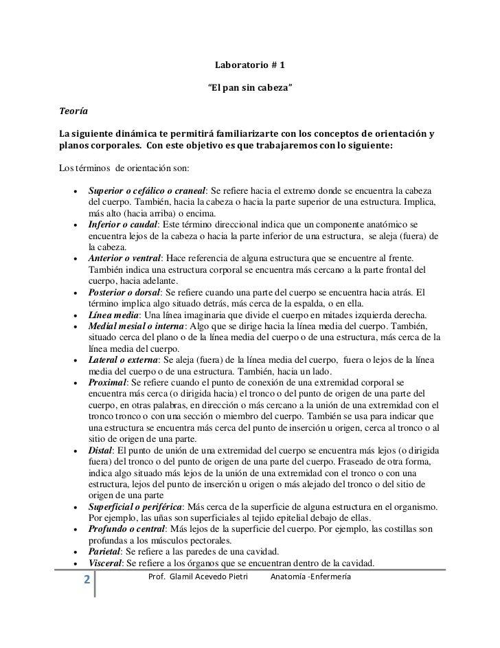 Fantástico La Forma De Estudiar La Anatomía Y La Fisiología De ...