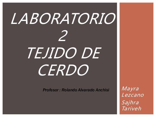 Mayra Lezcano Sajhra Tariveh LABORATORIO 2 TEJIDO DE CERDO Profesor : Rolando Alvarado Anchisi