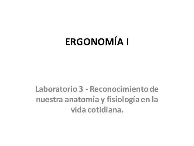 Laboratorio 3 - Informe - Reconocimiento de nuestra anatomía y fisiol…