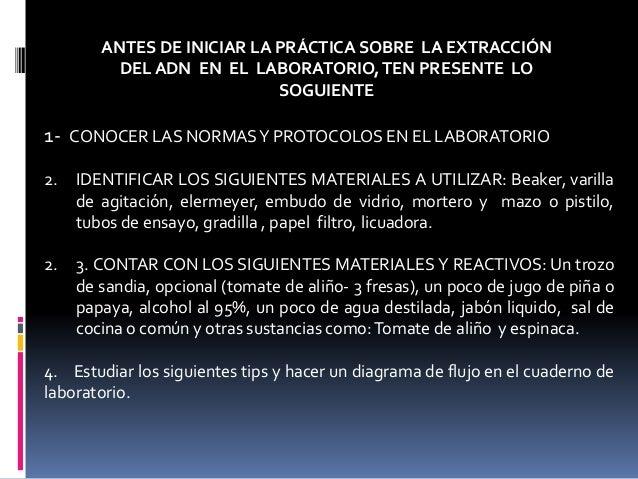 ANTES DE INICIAR LA PRÁCTICA SOBRE LA EXTRACCIÓN DEL ADN EN EL LABORATORIO,TEN PRESENTE LO SOGUIENTE 1- CONOCER LAS NORMAS...
