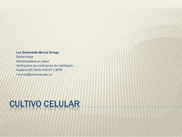 Luz Esmeralda Murcia Urrego Bacterióloga Administradora en salud Verificadora de condiciones de habilitación Auditora ISO ...