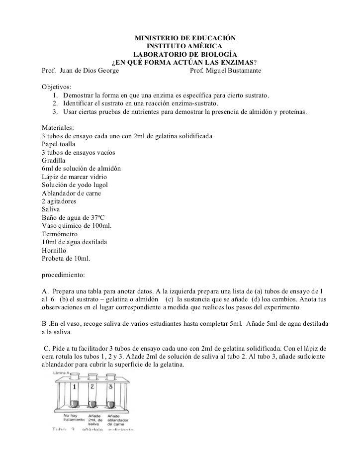 MINISTERIO DE EDUCACIÓN                                 INSTITUTO AMÉRICA                             LABORATORIO DE BIOLO...