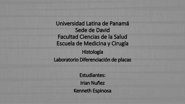 Universidad Latina de Panamá Sede de David Facultad Ciencias de la Salud Escuela de Medicina y Cirugía Histología Laborato...