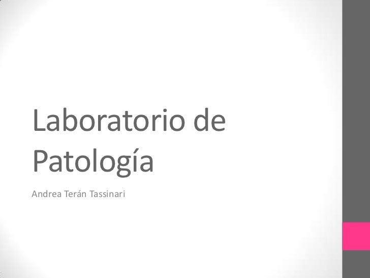 Laboratorio dePatologíaAndrea Terán Tassinari