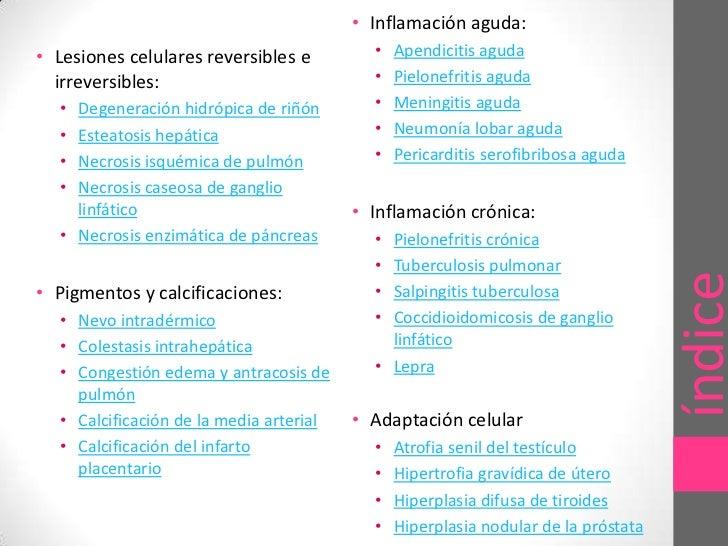 Laboratorio de patologia Slide 2