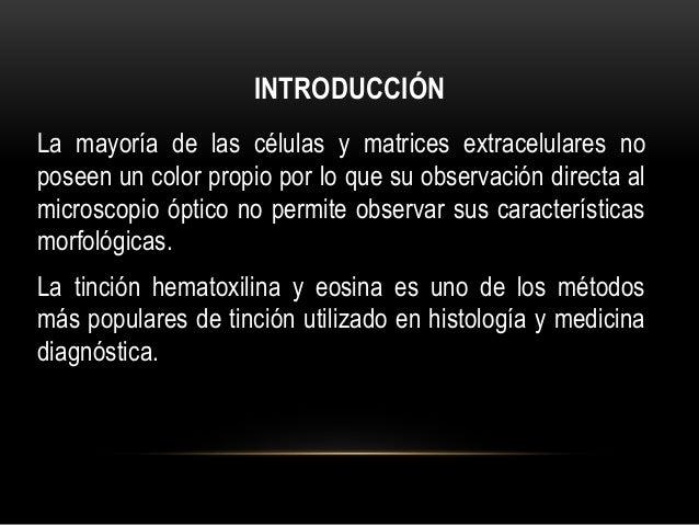Laboratorio de Histologia: tinción de hematoxilina y eosina Slide 2