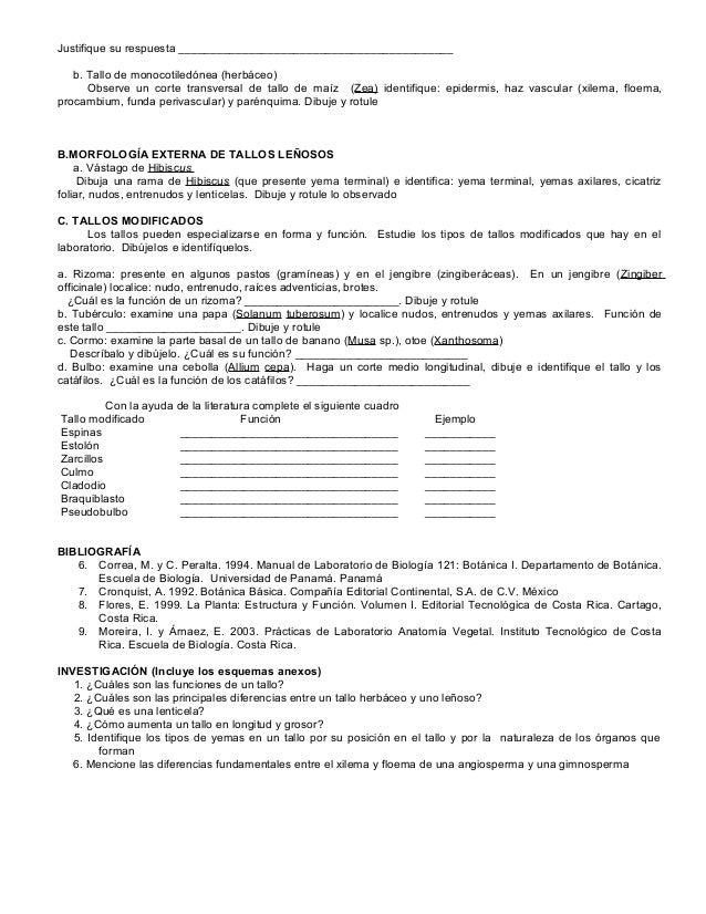 Fantástico Manuales Respuestas De Laboratorio De Anatomía Patrón ...