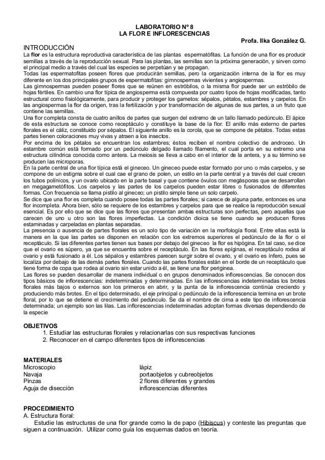 LABORATORIO Nº 8  LA FLOR E INFLORESCENCIAS  Profa. Ilka González G.  INTRODUCCIÓN  La flor es la estructura reproductiva ...