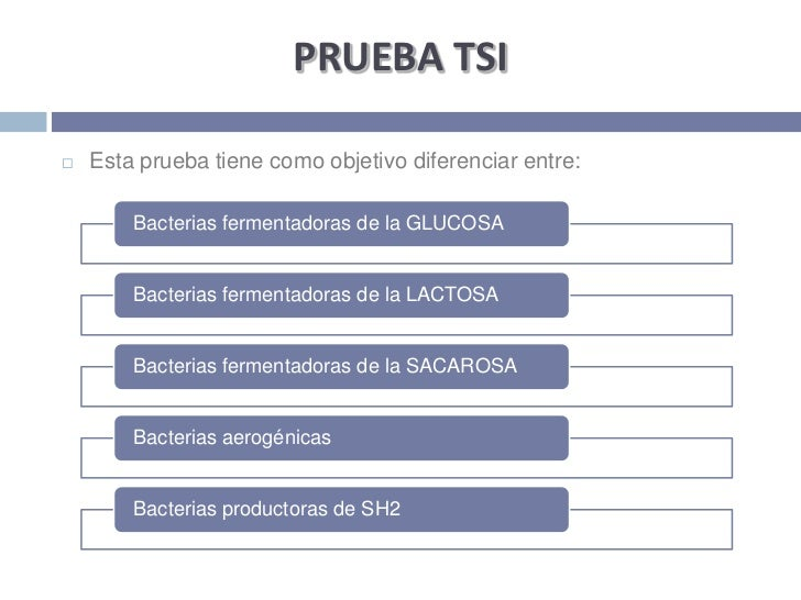 PRUEBA TSI <br />Esta prueba tiene como objetivo diferenciar entre:<br />