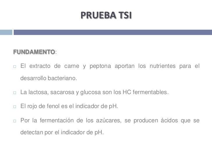 PRUEBA TSI<br />FUNDAMENTO:<br />El extracto de carne y peptona aportan los nutrientes para el desarrollo bacteriano. <br ...