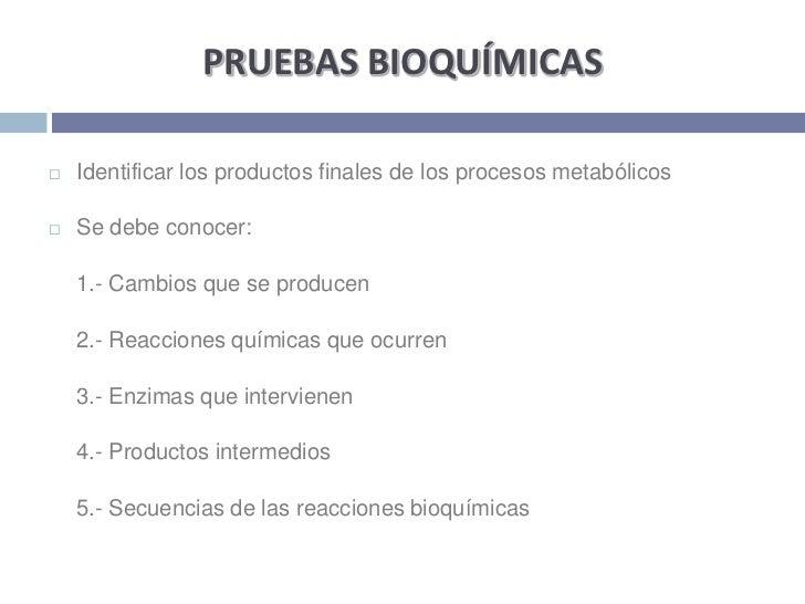 PRUEBAS BIOQUÍMICAS<br />Identificar los productos finales de los procesos metabólicos <br />Se debe conocer:<br />1.- Ca...
