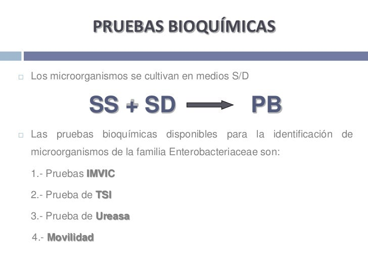 PRUEBAS BIOQUÍMICAS<br />Los microorganismos se cultivan en medios S/D <br />SS + SD            PB<br />Las pruebas bioquí...