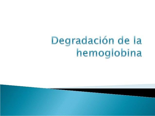 Podemos observar que la hemoglobina                                    tiene una estructura cuaternaria se                ...
