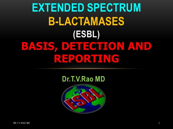 Dr.T.V.Rao MD<br />EXTENDED SPECTRUM B-LACTAMASES(esbl)basis, detection and reporting<br />Dr.T.V.Rao MD<br />1<br />