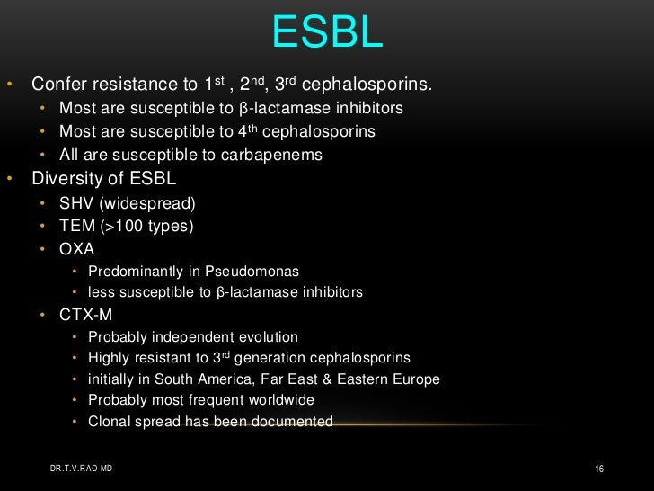 ESBL<br />Confer resistance to 1st , 2nd, 3rd cephalosporins. <br />Most are susceptible to β-lactamase inhibitors<br />Mo...