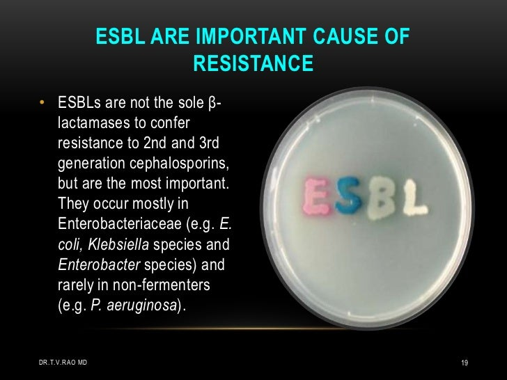 ESBLs are not the sole β-lactamases to confer resistance to 2nd and 3rd generation cephalosporins, but are the most import...