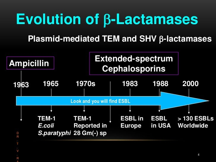 Evolution of -Lactamases<br />Plasmid-mediated TEM and SHV -lactamases<br />Extended-spectrum<br />Cephalosporins<br />A...
