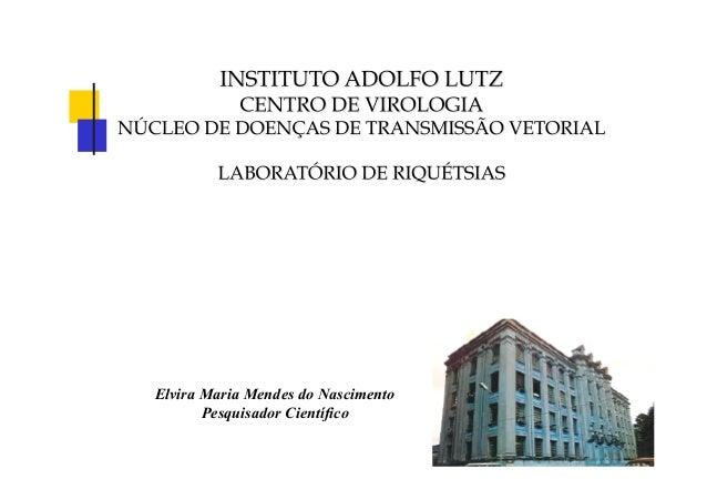 Elvira Maria Mendes do Nascimento Pesquisador Científico