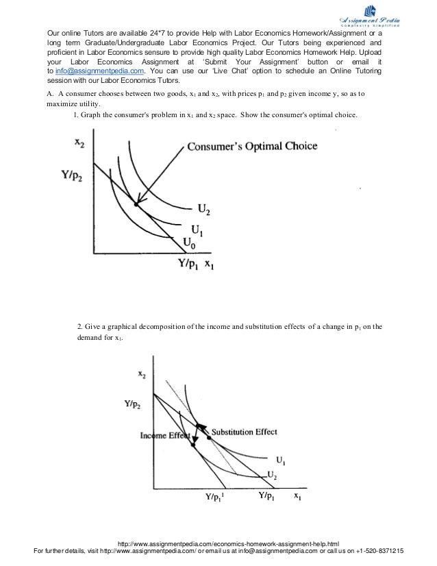 economics homework assistance