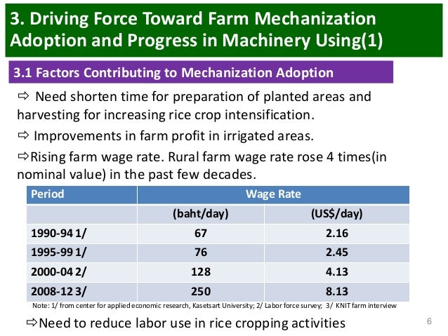 New facts for old debates: Farm size and productivity in US agriculture
