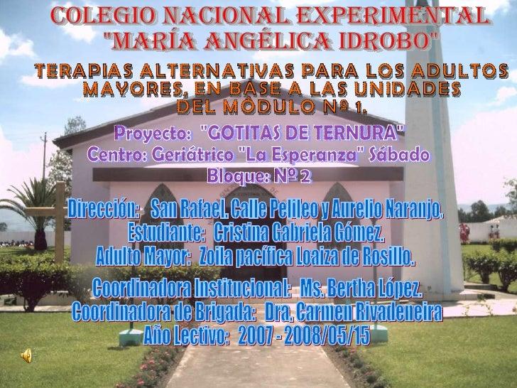 """COLEGIO NACIONAL EXPERIMENTAL """"MARÍA ANGÉLICA IDROBO"""" TERAPIAS ALTERNATIVAS PARA LOS ADULTOS  MAYORES, EN BASE A..."""