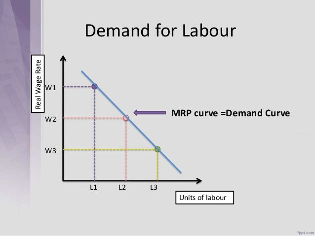 the demand for labor The magnitude of the effect of welfare reform on wages and employment is highly dependent on the elasticity of labor demand and labor supply the effect of the elasticity of labor demand and labor supply on the percentage change in wages and employment can be obtained by differentiating equations (i) and (ii) with respect to the elasticities.