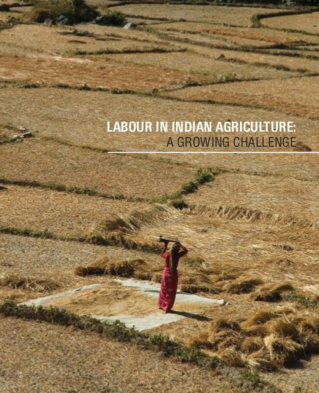 LABOUR IN INDIAN AGRICULTURE: A GROWING CHALLENGE highlanders.design@gmail.com Agriculture Division Federation House, Tans...