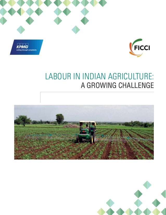 Labour in Indian Agriculture: A Growing Challenge Slide 3